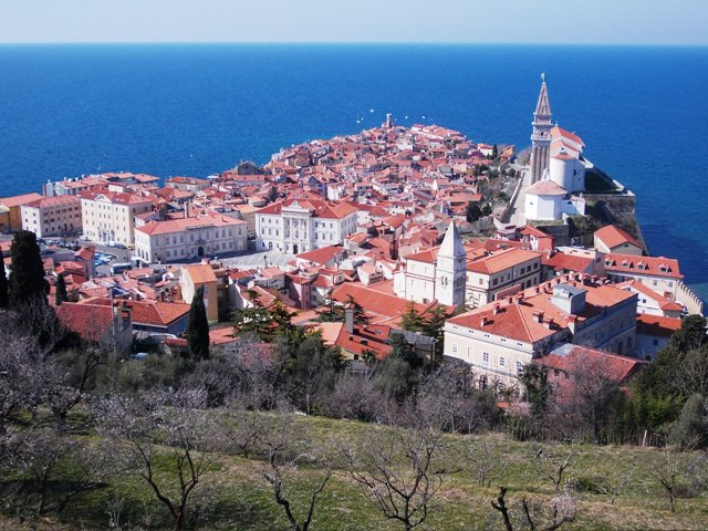 """Piran -- the """"pearl of Slovenia's Adriatic Coast"""" Panorama—as viewed from the Morgoron Hill defensive walls"""